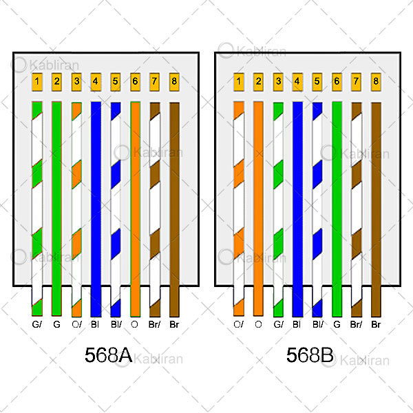 ترتیب-رنگ-رشته های-داخلی-کابل شبکه-جهت-اتصال-به-سوکت-شبکه
